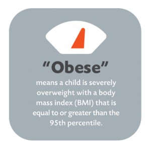 obesity health problems essay